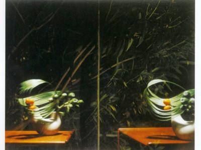 Sharon Lockhart, Ikebana