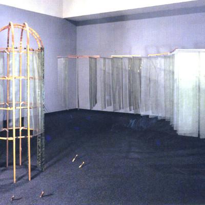 Kim Abeles, Observation Installation